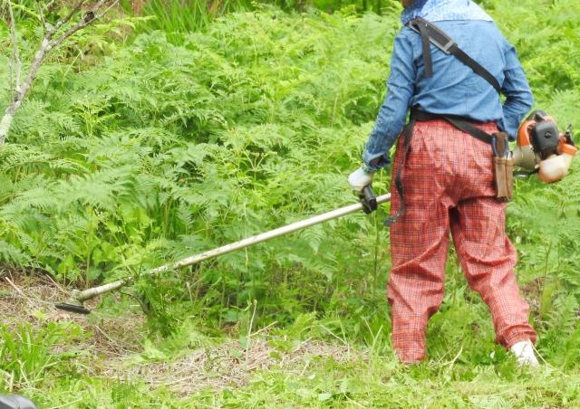 村山市で草刈りにかかる料金相場は?追加料金や業者選びのコツまで解説